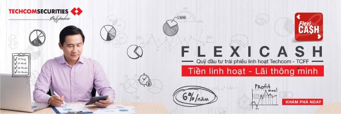 Chứng chỉ quỹ FlexiCa$h là gì? Có nên tham gia chứng chỉ quỹ FlexiCa$h không?
