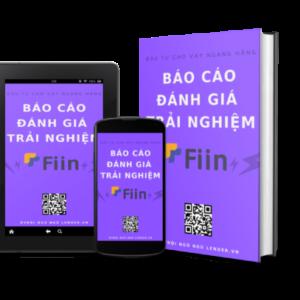 Báo Cáo đánh Giá Trải Nghiệm đầu Tư Cho Vay Ngang Hàng Tại Fiin