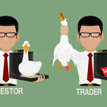Trader Hay Investor