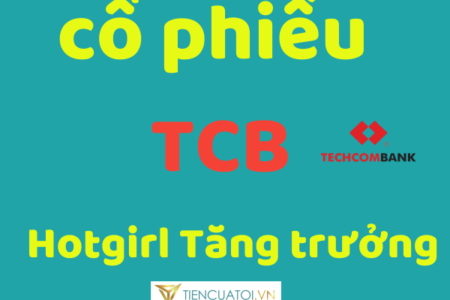 Mua Cổ Phiếu Techcombank Kiếm Lợi Nhuận Tăng Trưởng Cao Bình Quân 20%-30%/năm