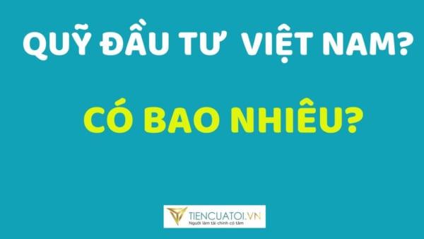 Tổng Quan Về Các Loại Quỹ đầu Tư ở Việt Nam