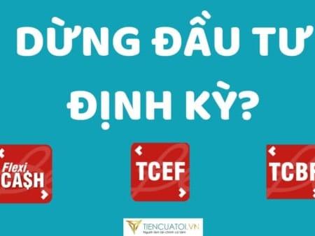 Dung Dau Tu Dinh Ky