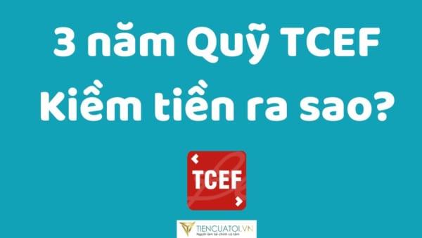 Đánh Giá Hiệu Quả Kiếm Tiền Của Quỹ đầu Tư Cổ Phiếu VN30 (TCEF) Của TCBS