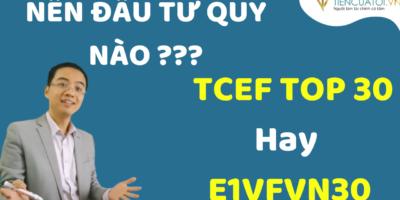 Nên đầu Tư Quỹ Thụ động ETF E1VFVN30 Hay Quỹ  Mở Chủ động TCEF Techcom Top 30