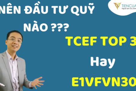 Nên đầu Tư Quỹ ETF E1VFVN30 Hay Quỹ  Mở Chủ động TCEF Techcom Top 30